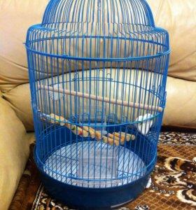 Клетка для попугая.