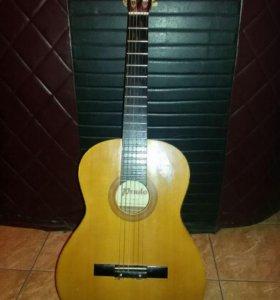 Гитара (prado)