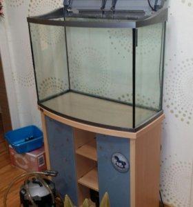 Аквариум 120 литров, внешний фильтр и декорации