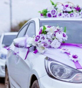 Белоснежный солярис на свадьбу