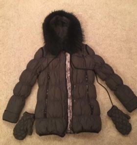Зимняя куртка (пуховик) + руковицы