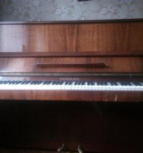 Фортепиано ростов дон