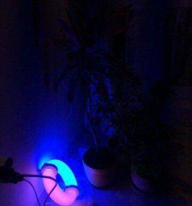 Индукционная лампа для растений биколорная