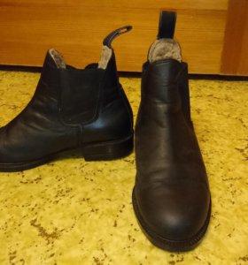 Ботинки для конного спорта