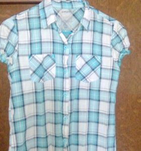 Блуза,рубашки