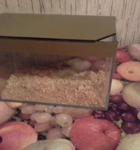 Продам аквариум 5 литров