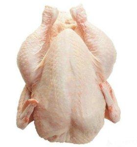 Курица бролеры домашняя
