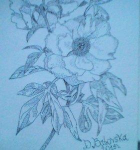 Рисунок ,,Мака,, Гелиевой ручкой