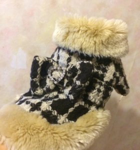 Зимнее пальто для мелких пород собак