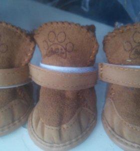 Ботиночки зимние для собачки