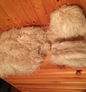 Меховой наборчик на зиму