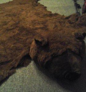 Искусственная шкура медведя