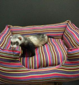 Лежанка для собак.