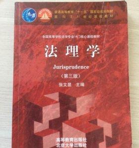 Юриспруденция на китайском
