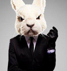 Продам крольчатину