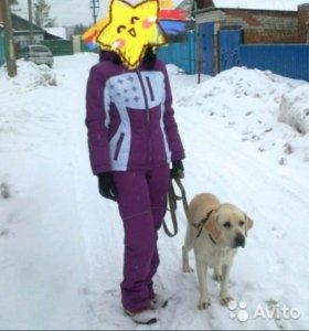 Продам спортивный зимний костюм
