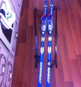 Лыжный набор : лыжи , ботинки ,палки.