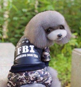 Комбинезон для маленьких собак