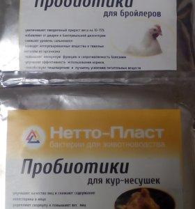 Пробиотики для домашних животных.
