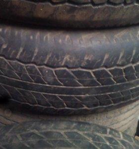 Шины летние Dunlop