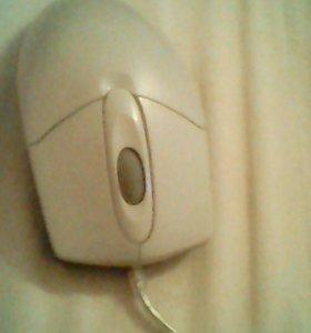 Мышка ТОРГ состояние хорошее.