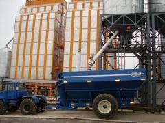 Услуги по сушки зерновых культур