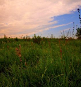 Земельный участок 8 соток в сел. Коркмаскала.