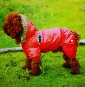 Зимний комбез для собаки
