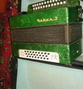 Гармошки , баяны и аккордеоны