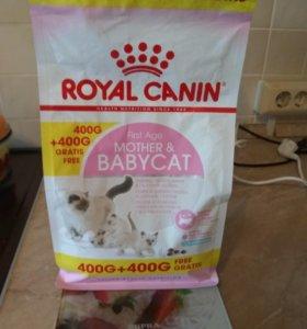 Корм для котят Royal
