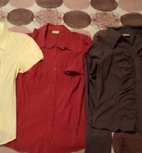 Фирменные рубашки из магазина