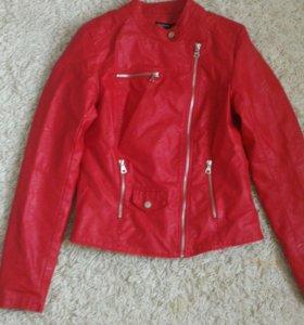 Новая Куртка страдивариус