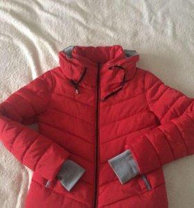 Курточка холодное деми