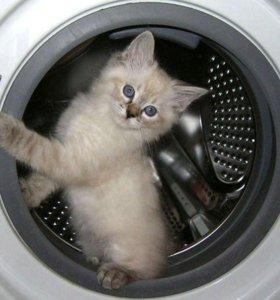 Ремонта стиральных машин у вас на д ому