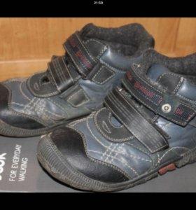 Ботинки Антилопа демисезон