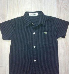 Рубашка Lacoste 3-5 лет