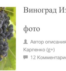 Вино сухое,домашнее, красное.