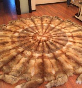 Ковёр из лисичек