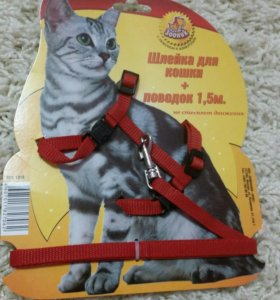 Поводок и шлейка для кошек и маленьким собак