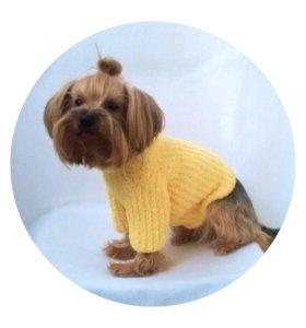 Солнечный плюшевый свитер