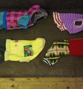 Пакет одежды 12-14 размера для собаки