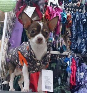 Куртка для собаки L