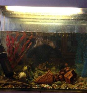Продам аквариум