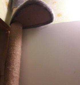 Лестница , когтеточка  для кошки