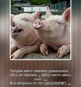 Свинино домашнее ...
