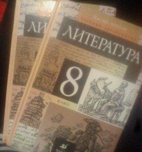 Учебник по литературе,2 части.
