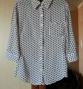 Рубашка и блуза женская