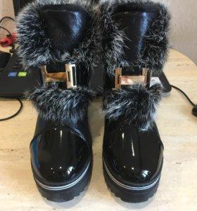 Новые зимние Hermes