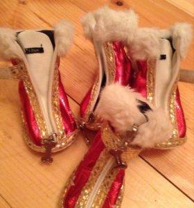 Ботиночки для собак Is Pet Christmas