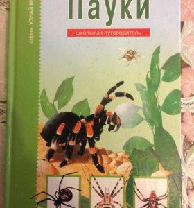 Книга пауки